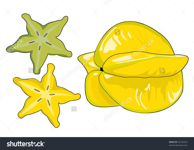 Starfruit Carambola Vector Stock Vector 42155323.