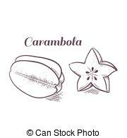 Carambola Vector Clipart EPS Images. 256 Carambola clip art vector.