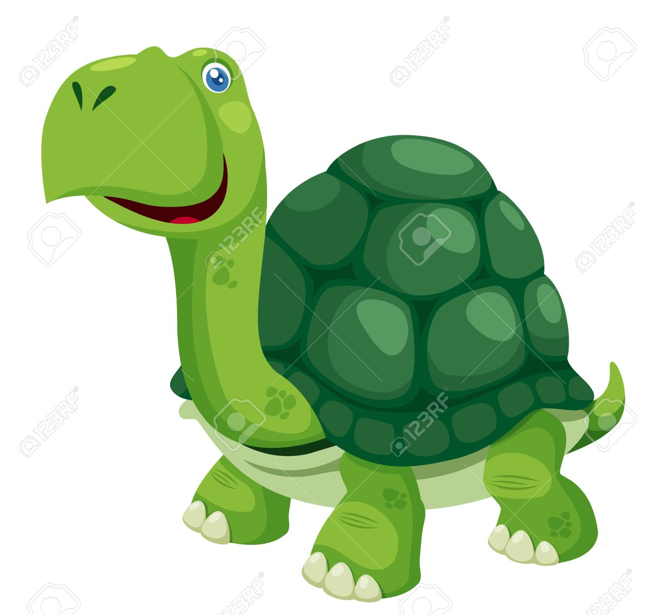 Illustration Of Isolated Turtle On White Royalty Free Cliparts.