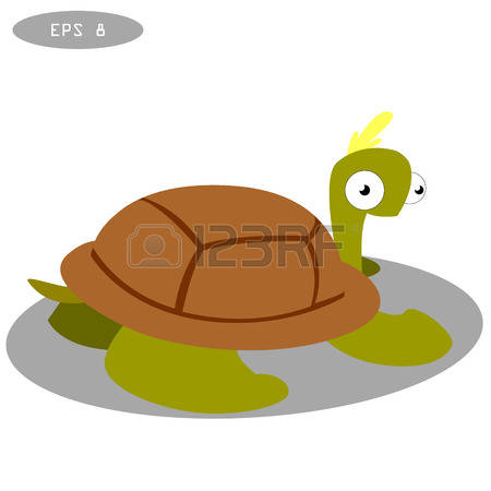 Carapace Amphibian Images & Stock Pictures. Royalty Free Carapace.