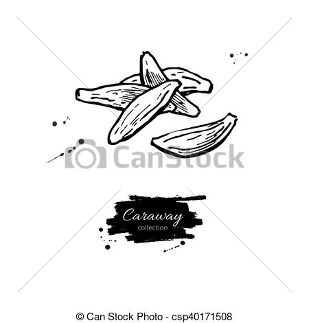 Vector Clipart of Caraway seed heap vector hand drawn illustration.