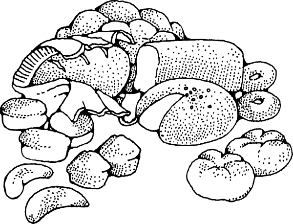 Baked Goods Clip Art at Clker.com.