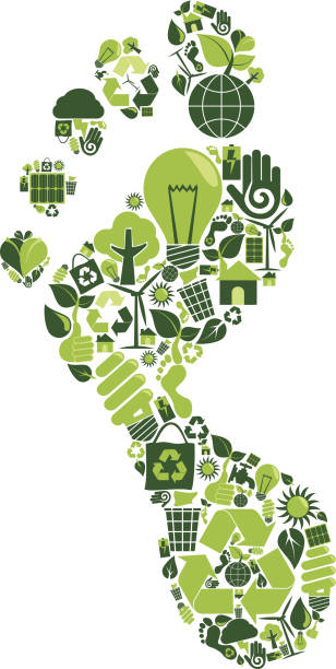 Best Carbon Footprint Illustrations, Royalty.