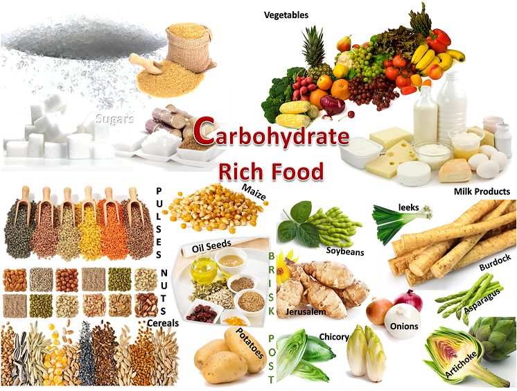 Good Examples of Carbohydrates Clip Art.