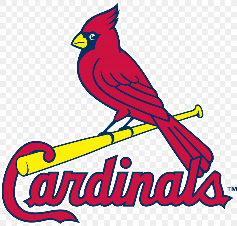 Logos And Uniforms Of The St. Louis Cardinals MLB Busch.