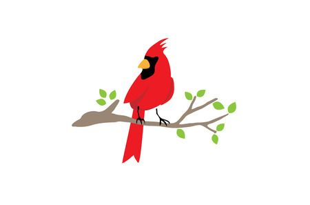 1,904 Cardinal Bird Cliparts, Stock Vector And Royalty Free Cardinal.