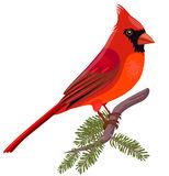 Cardinal Clipart Free.