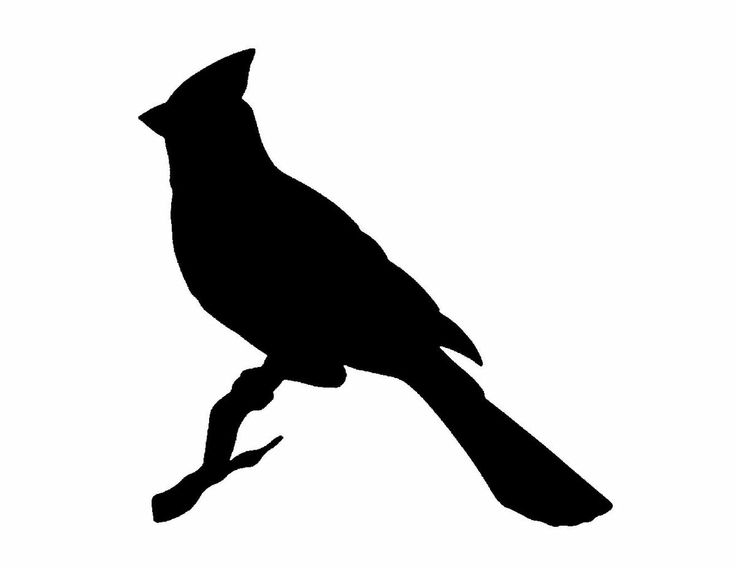 Cardinals silhouette and clip art on.