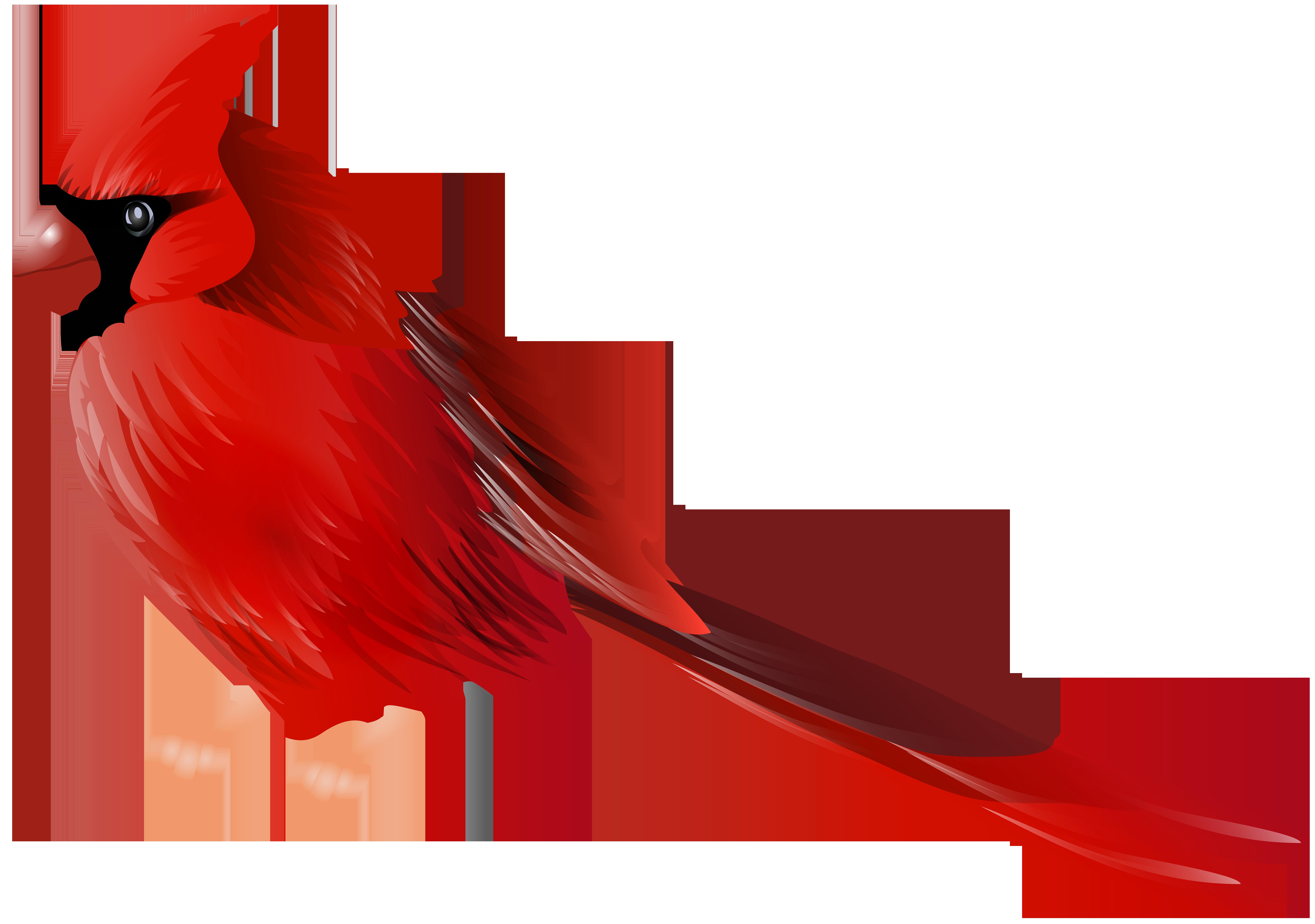 Cardinal Bird PNG Clip Art.