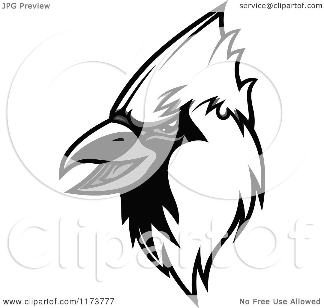 Clipart of a Grayscale Cardinal Head 2.