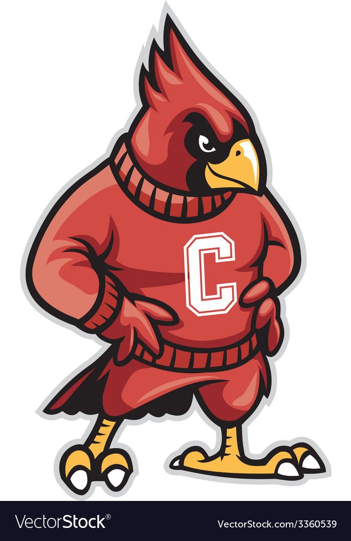 Cardinal school mascot.