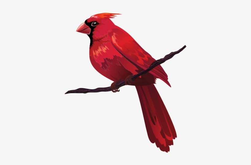Bird Euclidean Vector Red Clip Art.