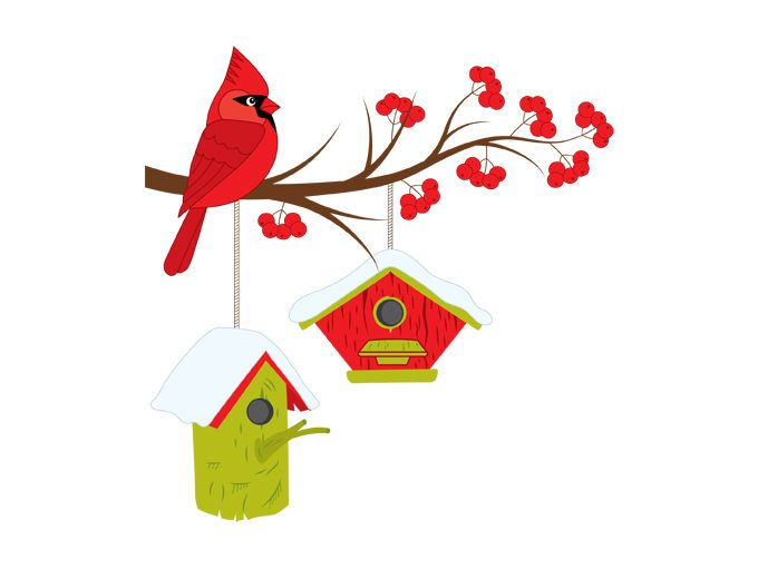 Christmas Cardinal On Branch Clipart.