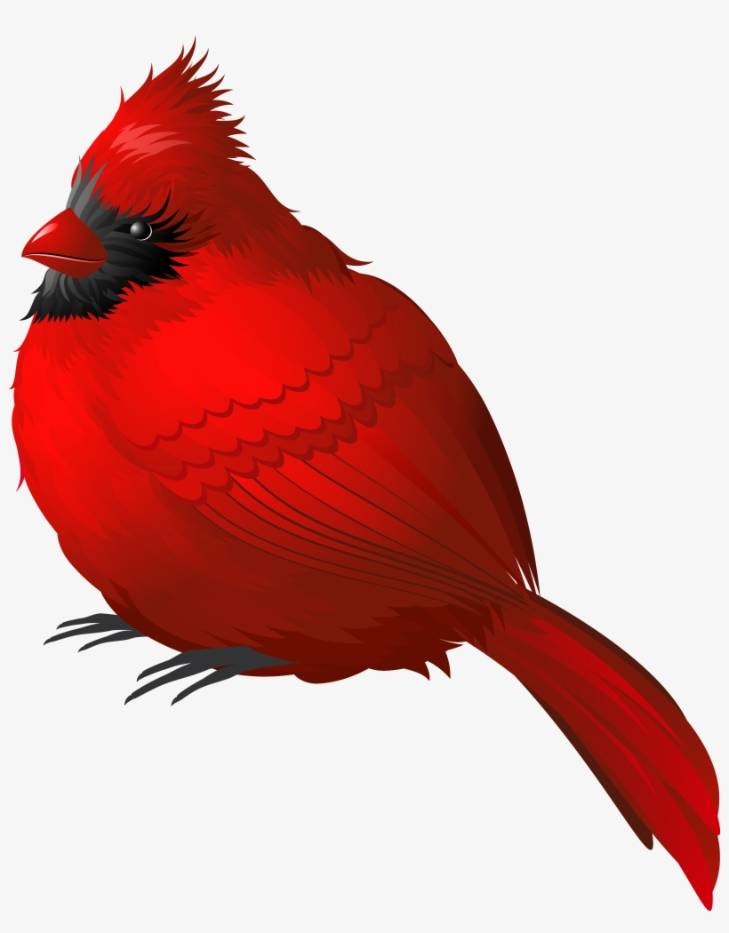 Download Free png Red Winter Bird Png Clipart Image Cardinal Png.