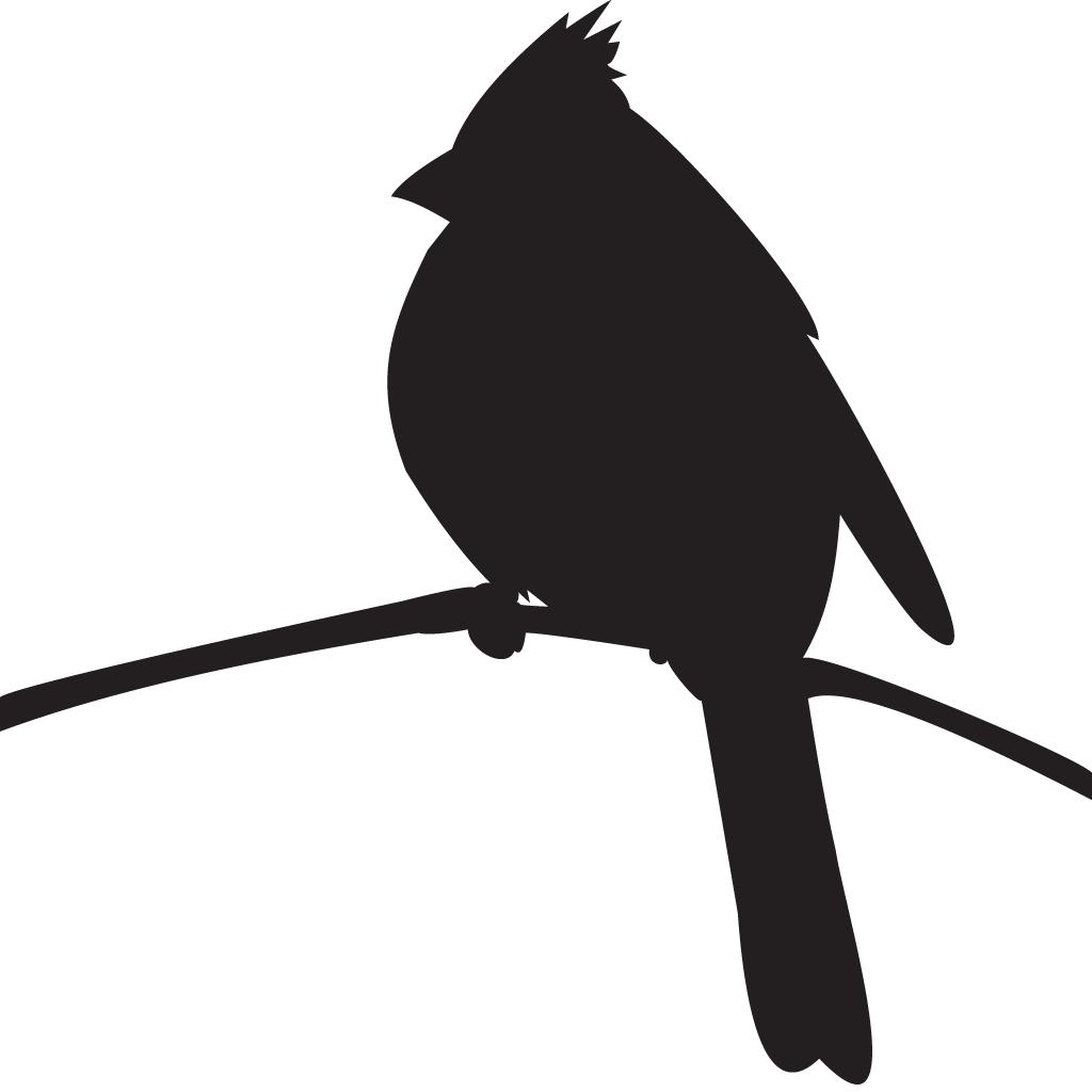 Cornell Lab of Ornithology Bird Northern cardinal.
