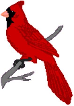 Cardinal Bird Clipart at GetDrawings.com.