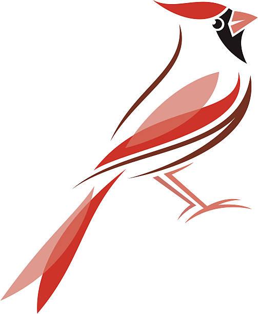 Best Cardinal Illustrations, Royalty.