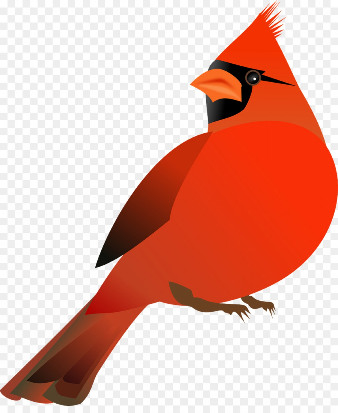 Free Cardinal Clipart st louis cardinals, Download Free Clip Art on.