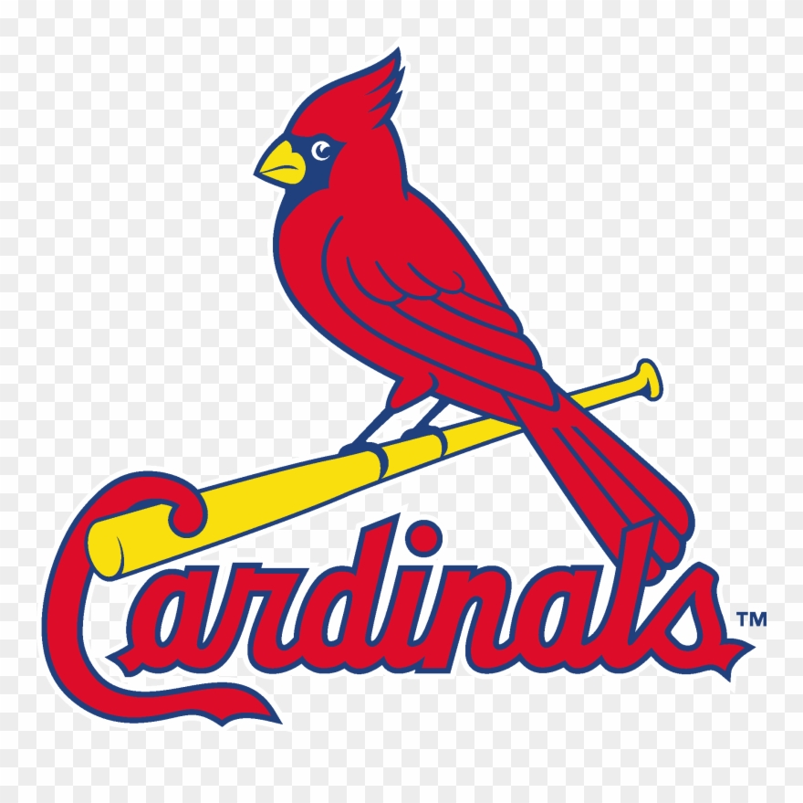 Louis Cardinals Logo Vector.
