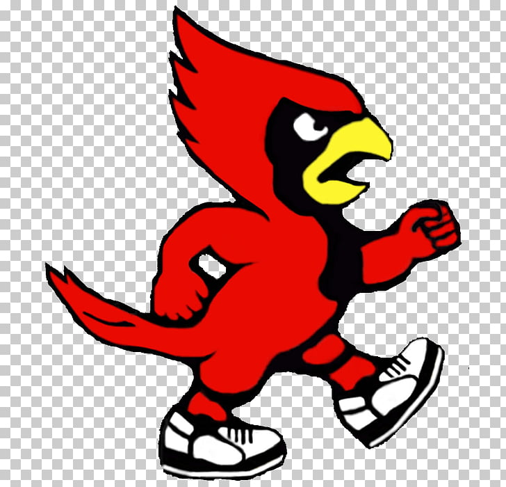 Louisville Cardinals football St. Louis Cardinals Louisville.