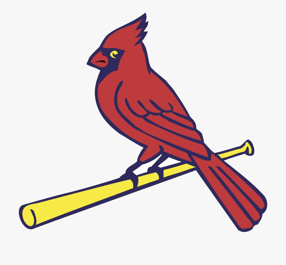 St Louis Cardinals.