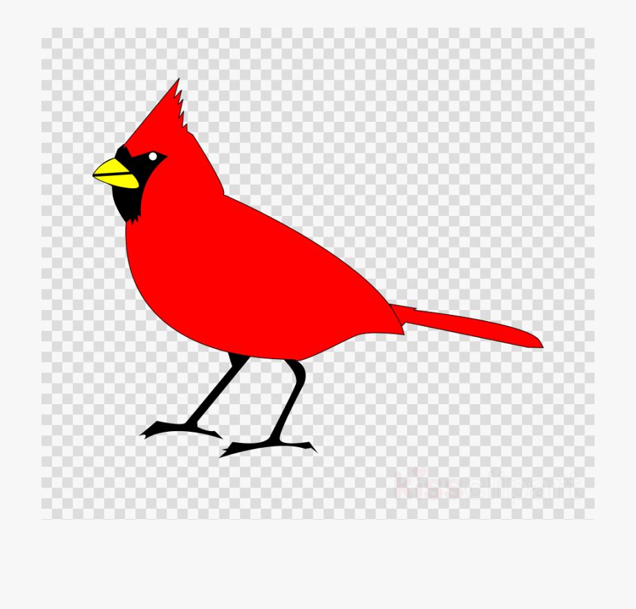 Bird Transparent Image.