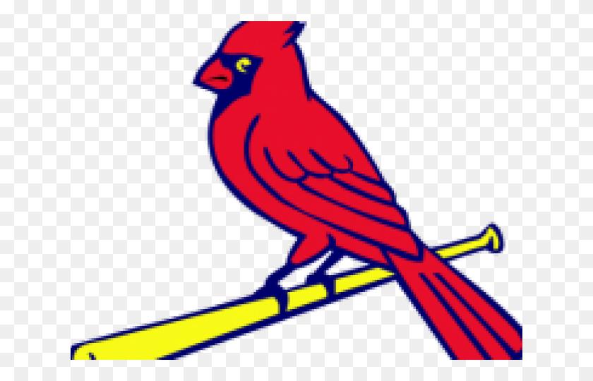 Funny Cardinal Cliparts.
