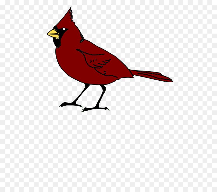 Clip art Arizona Cardinals Northern cardinal St. Louis Cardinals.