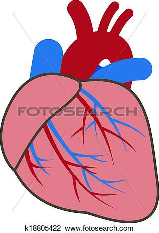 Showing post & media for Cardiac system cartoons.