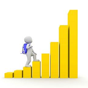 Career paths for fresh Graduates.