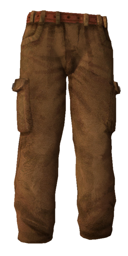Download Free png Cargo Pants.png.
