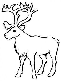 Caribou Clipart.