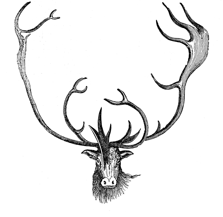 Vintage Animal Clip Art.