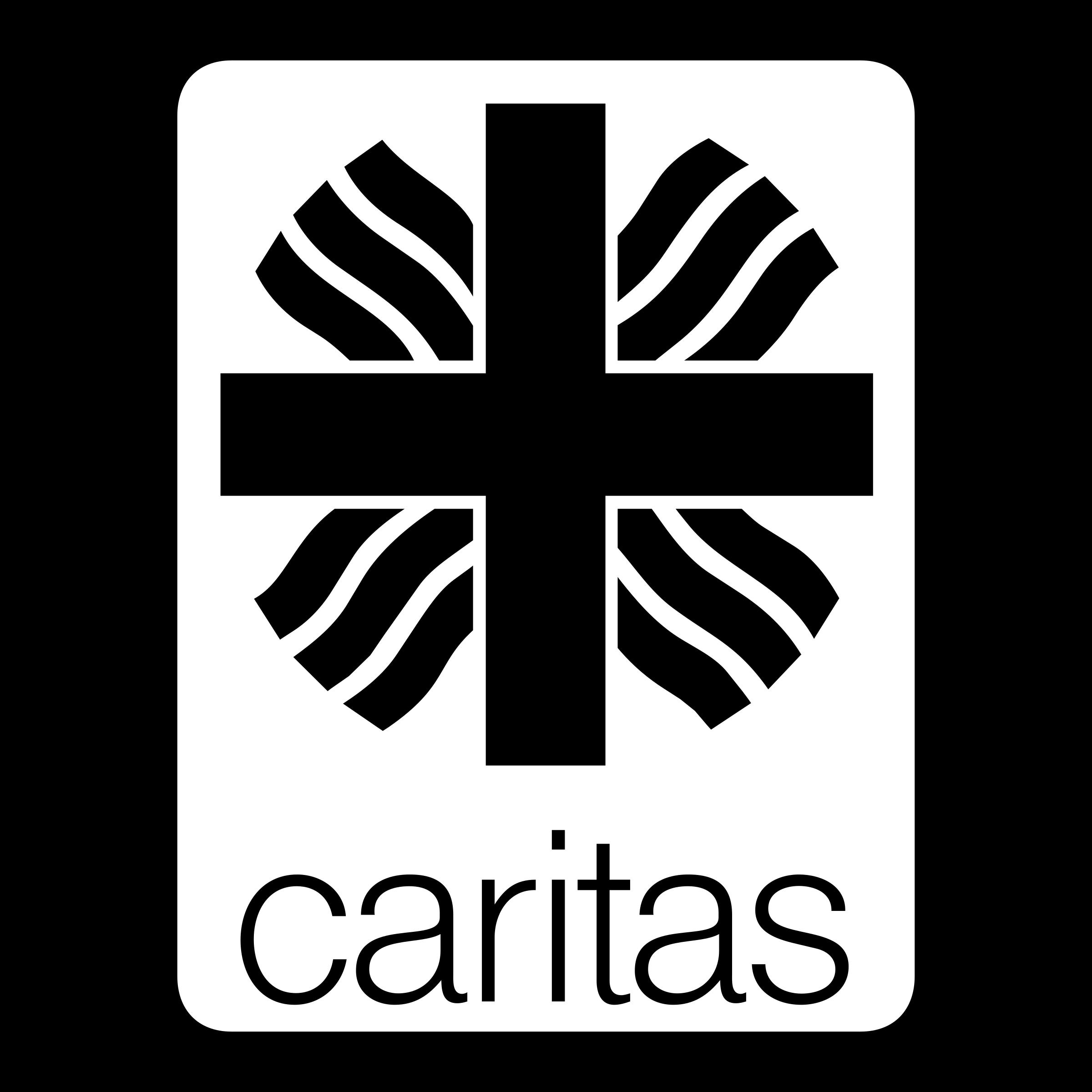 Caritas Logo PNG Transparent & SVG Vector.