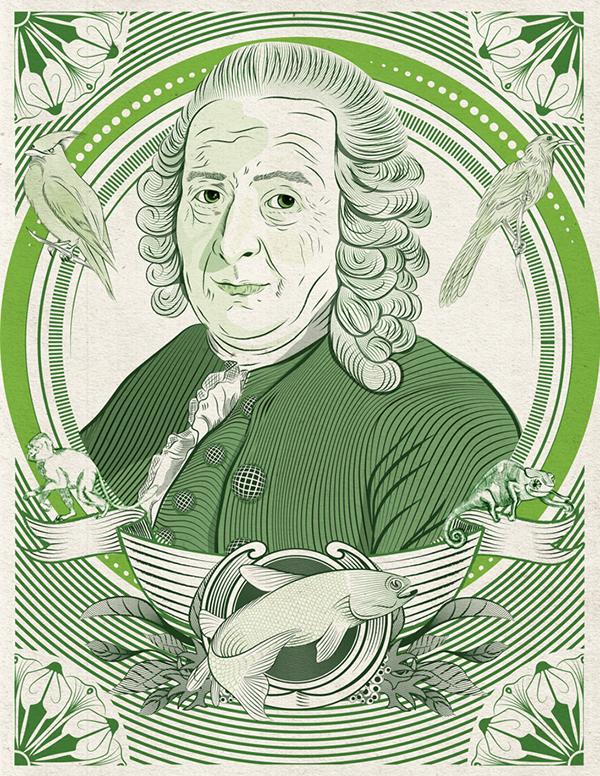 Carl von Linné on Behance.