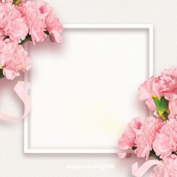 2019 的 Simple Pink Carnation Mothers Day Background, Silk.