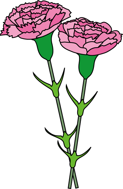 Carnation Clipart.
