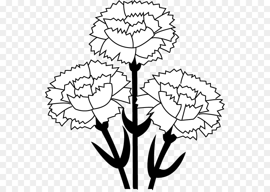 Black And White Flower png download.