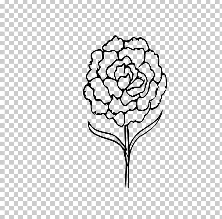 Carnation Drawing Coloring Book Flower PNG, Clipart, Artwork.