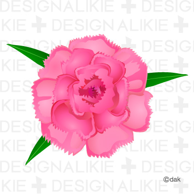 Free Carnation Flower Cliparts, Download Free Clip Art, Free.