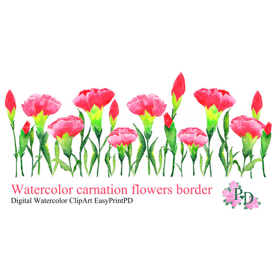 Watercolor Flowers clipart carnation border clip by easyprintPD.