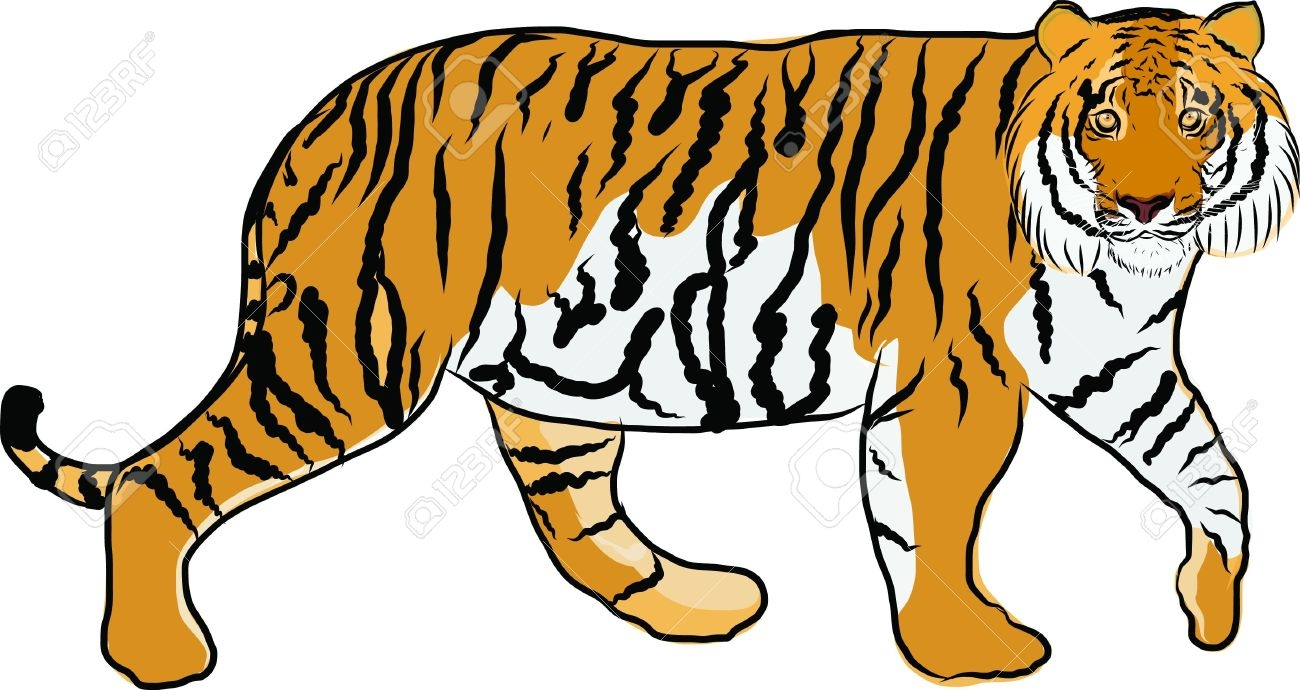 Carnivore Animals Clipart.