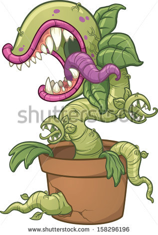 Carnivorous Plant Stock Images, Royalty.