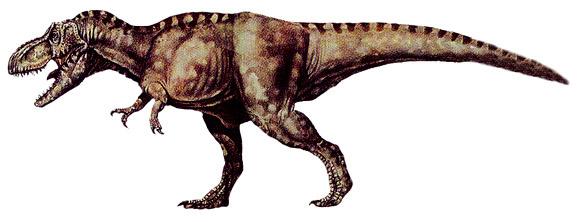Dinosaur Facts, Types of Dinosaurs.