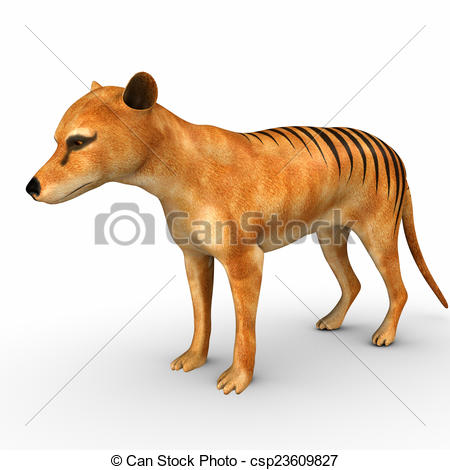 Clip Art of Tasmanian Tiger was the largest known carnivorous.