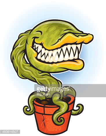 Carnivorous Plant Vector Art And Graphics.