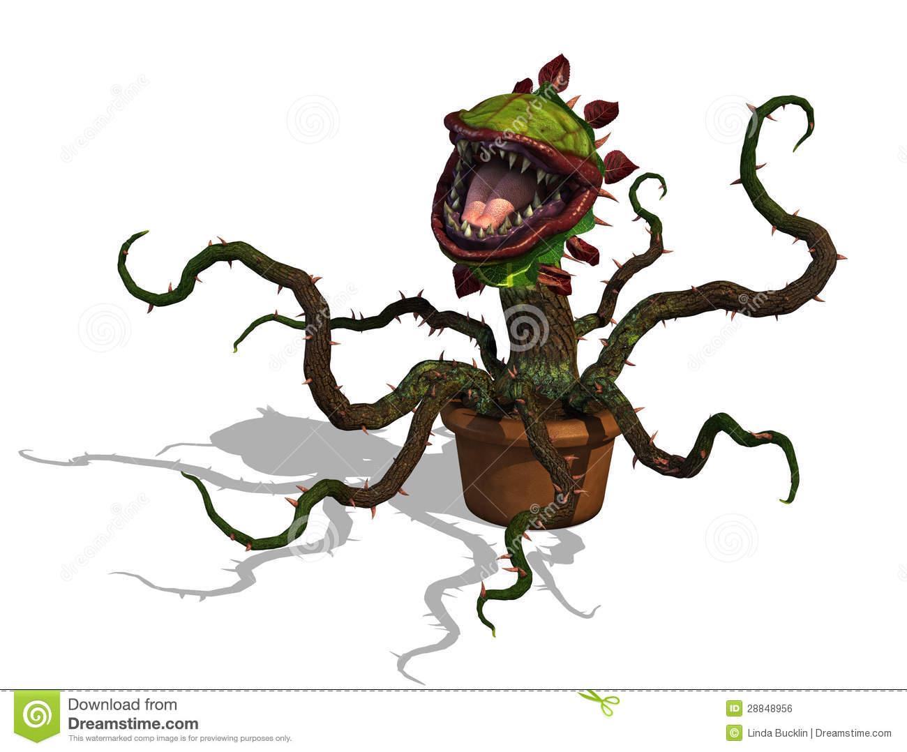 Carnivorous Plant Stock Illustrations.