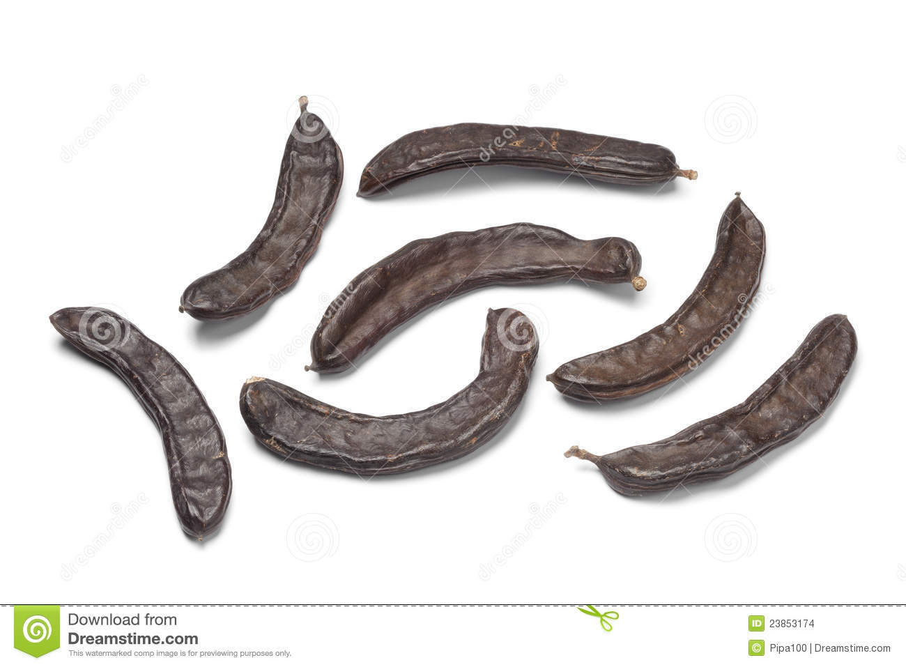 Whole Carob Pods Stock Images.