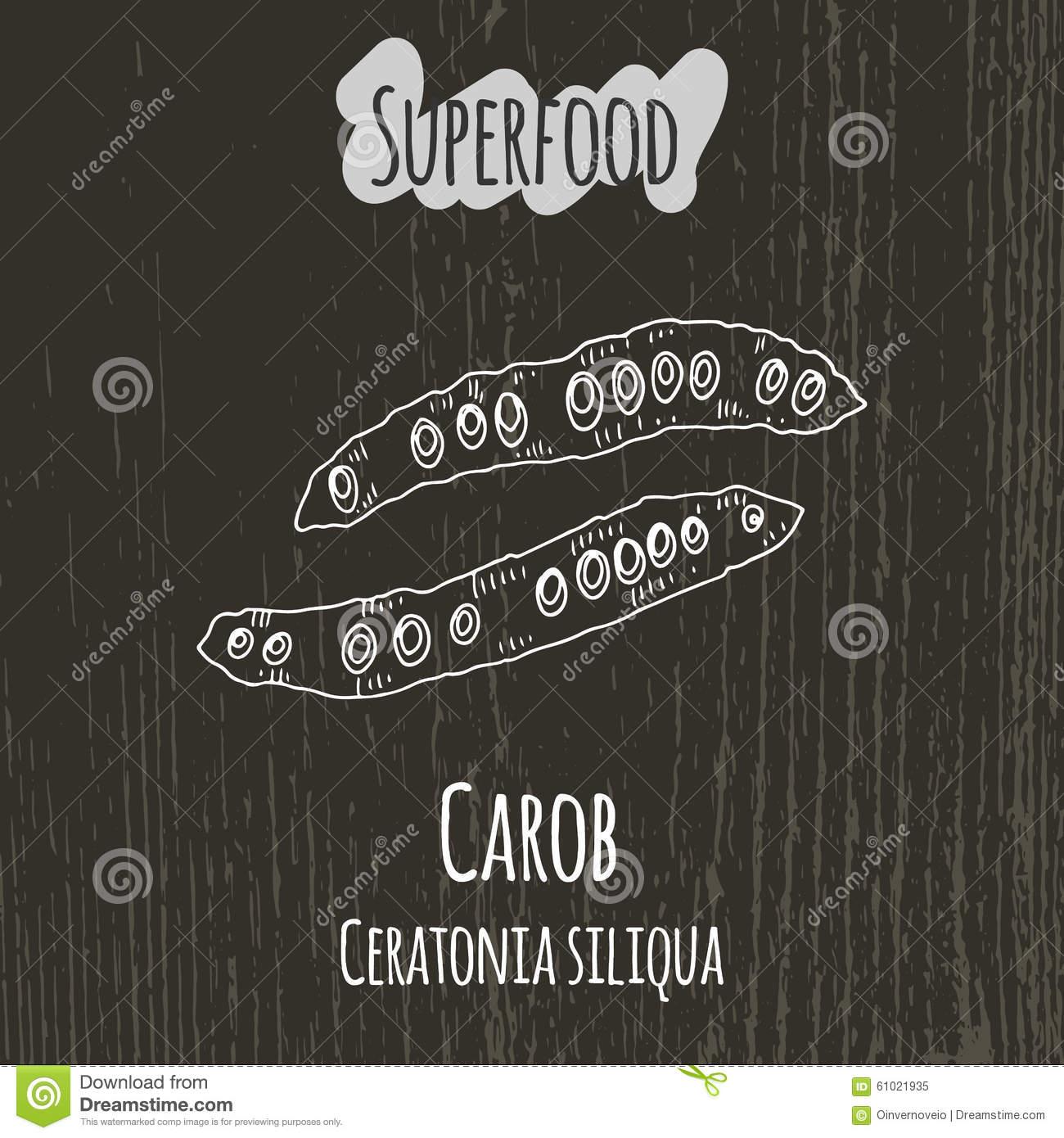 Carob Stock Illustrations.