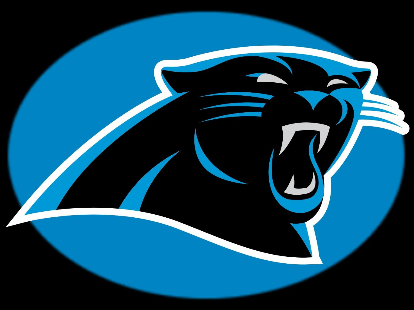Panthers Lose Super Bowl, Look Ahead To Next Season.